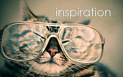 12 exempel på strålande webbdesign i WordPress & Divi
